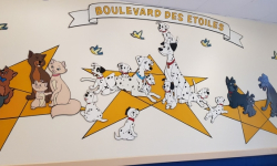 Animal Care Center