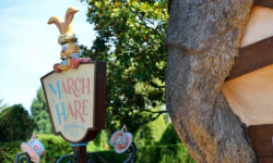 March Hare Refreshments